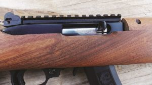 The heart of the rifle is all Ruger 10/22